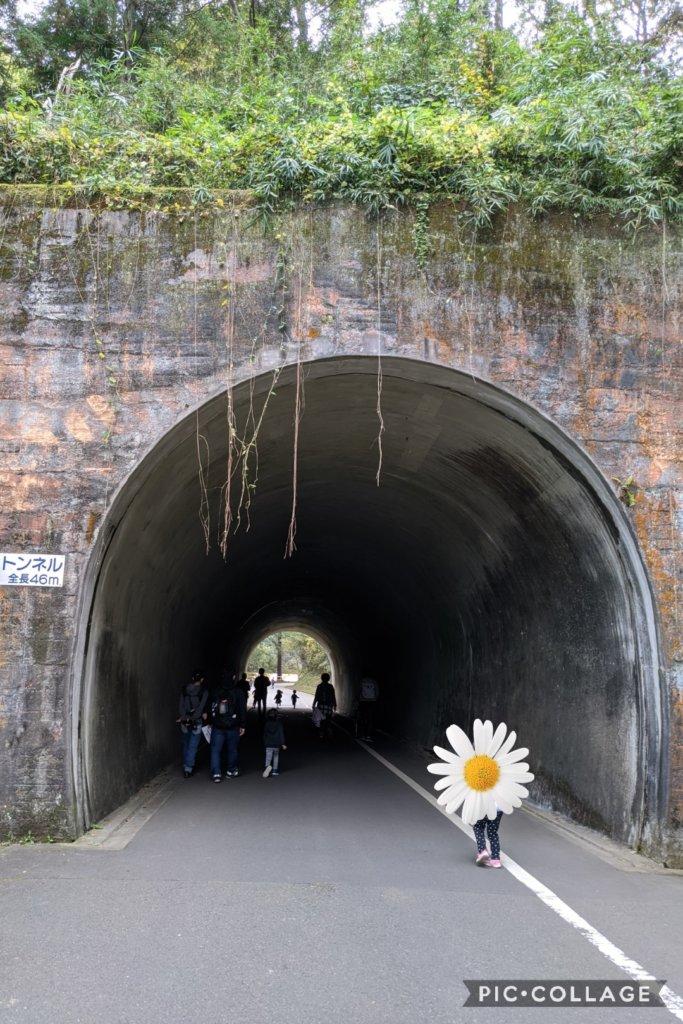 正面入口を右手に歩くとトンネルがある